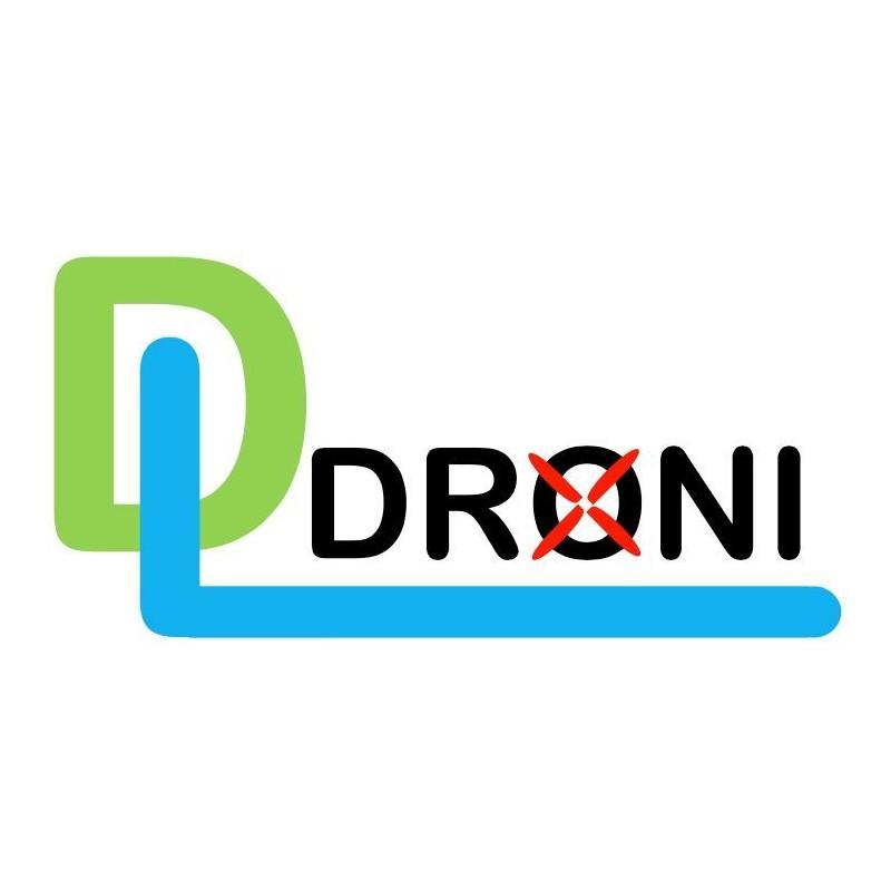 DL Droni Logo