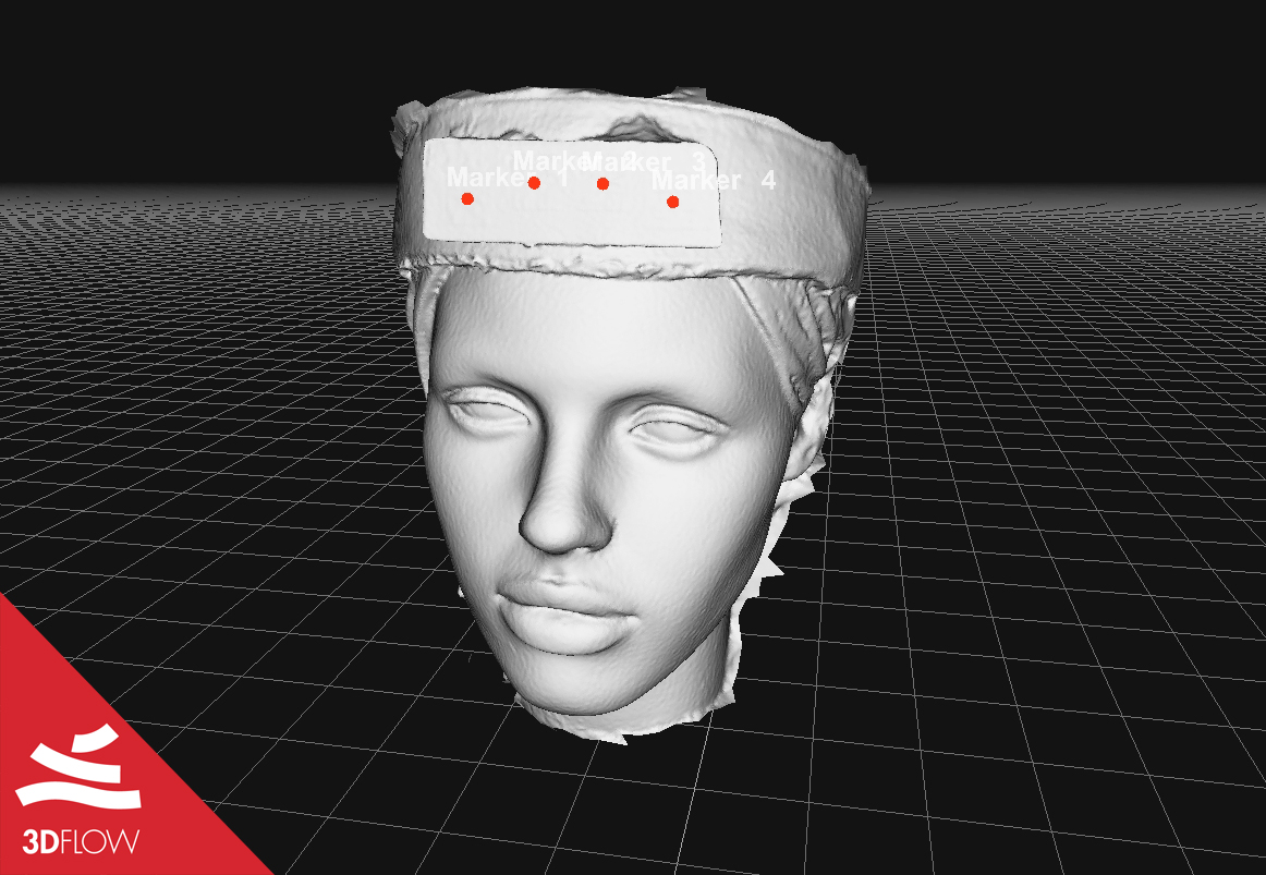 Fig. 3. Screenshot of the 3D model of the mannequin head colored mesh (left) and mesh geometry (right) generated with 3DF Zephyr.