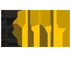 MADI_Logo